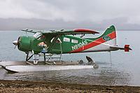 Float plane pilot watches brown bear swimming in the Naknek lake, Katmai National Park, Alaska.
