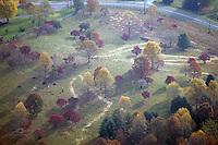 aerial, land, fall colors, farm