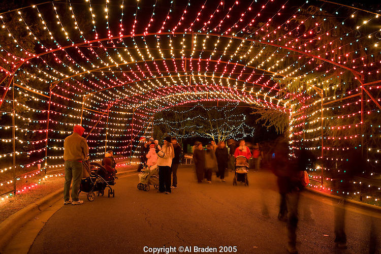 Zilker Park Christmas Lights