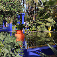 Majorelle Garden, Marrakech, Morocco. These botanical gardens were designed by French painter Jacques Majorelle, 1886-1962, in the 1920s and 1930s. He invented the shade of cobalt blue, known as Majorelle blue, which is used on the buildings and walls. Picture by Manuel Cohen