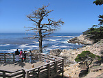 Viewing Platform, 17- Mile Drive, California, USA