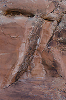 Eroding Sandstone Detail, Arches National Park, Utah, US