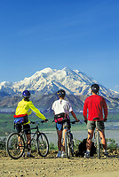 Mountain biking along the Denali Park Road provides amazing views of North American's largest peak, Mount McKinley or locally called Denali. The 90 mile gravel road traverses spectacular vistas of Alaska's most popular National Park.