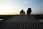 U.S. Marines from Company L, 3rd Battalion, 6th Marine Regiment head out shortly after dawn on a three-day mission in Marjah, Afghanistan. March 10, 2010 DREW BROWN/STARS AND STRIPES