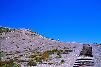 Wooden Steps at Windy Ridge, Mt. St. Helens National Volcanic Monument, Washington, US
