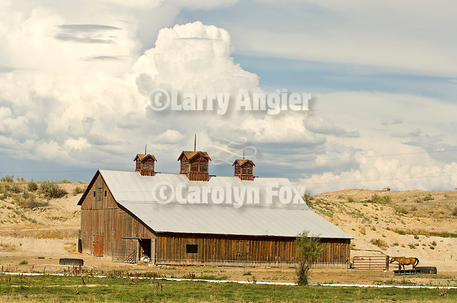 Wooden barn with three cupolas, clouds, horse in western Colorado