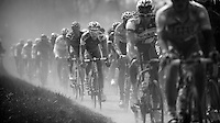 Paris-Roubaix 2012 ..dusty peloton