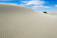 Sand dune at Farewell Spit, New Zealand