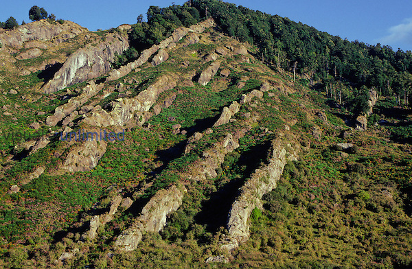 Outcrops of tilted hard sandstone conglomerate and shale strata (alternating shale and sandstone), part of the Longford Formation, showing differential weathering. Near Murchison, New Zealand.
