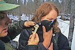 Measuring Teeth