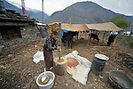 Sita Ghale, 14, uses a mortar and pestle to grind grain in the village of Goljung, in the Rasuwa District of Nepal near the country's border with Tibet.