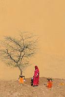 Women preparing and working on Waterholes for the short rainy season in the Thar Desert near Jaiselmer, Rajasthan India