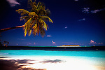 A palm tree leans over the rapidly disappearing beach of Ihuru island, the Maldives. The island is one of few that is incorporating artificial coral reef growth..