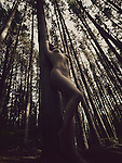Abstract artistic nude photo of a beautiful nude woman leaning against a tall tree in a pine forest