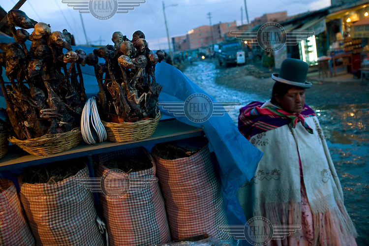 A woman wearing traditional clothing walks past dried llama foetuses for sale in a shop in El Alto. People buy these and take them to shamans or fortune tellers who burn the foetuses as an offering to Pachamama (Mother Earth).
