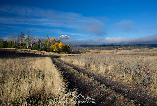 Idaho, South Central, Stanley. A back road through the Salmon River valley beneath Galena Summit in early autumn.