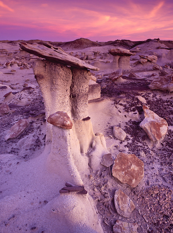 Weathered hoodoos from the Fruitland and the Kirtland Shale formations litter the Bisti Badlands