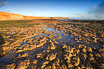 isle of wight, beach, Compton Bay, wave cut platform, Fossil, Dinosaur, coast, sunset Photographs of the Isle of Wight by photographer Patrick Eden