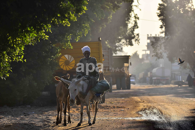 An Egyptian villager rides a donkey in Birqash outside of Cairo, Egypt, Sept. 30, 2015. Photo by Amr Sayed
