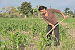 A woman hoes her corn field in Las Flores, Ixcan, Guatemala.