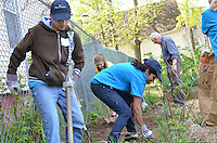 Wellpoint Community Service Day Connecticut | 2013-04-27 New Haven & Madison