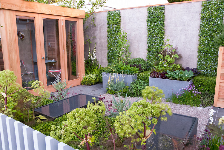 Urban Vegetable Herb Garden Flowers With House Plant