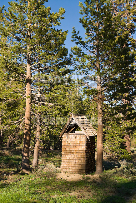 Cow camp at Tryon Meadow in the high Sierra Nevada of California...Shake-covered outhouse surrounded by lodgepole pines.