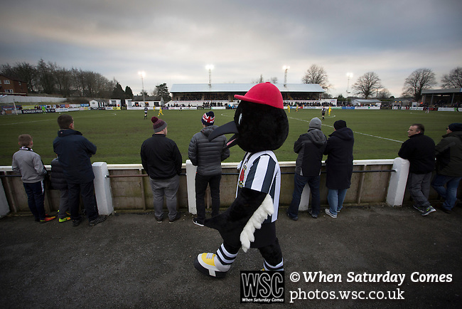 Chorley 2 Altrincham 0, 21/01/2017. Victory Park, National League North. The home club mascot Victory the Magpie walking round the terrace at Victory Park, as Chorley played Altrincham (in yellow) in a Vanarama National League North fixture. Chorley were founded in 1883 and moved into their present ground in 1920. The match was won by the home team by 2-0, watched by an above-average attendance of 1127. Photo by Colin McPherson.