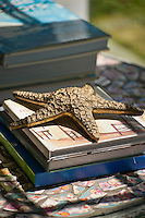 Starfish on top of hard covered books