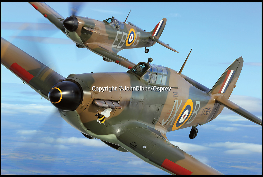 BNPS.co.uk (01202 558833)<br /> Pic: JohnDibbs/Osprey/BNPS<br /> <br /> Leading from the front - The Battle of Britain Memorial flight Hurricane leads the Spitfire in the skies over Southern Britain.<br /> <br /> Last of the Few - A photographer's stunning new book is a tribute to the last Hawker Hurricane's - the true workhorse of the Battle of Britain.<br /> <br /> Only 13 WW2 Hurricanes are still airworthy today, compared to over 60 of their more glamorous counterpart the Spitfire.<br /> <br /> But during the Battle of Britain there were in fact twice as many Hurricane's as Spitfires taking on Hitlers Luftwaffe in the skies over southern England.<br /> <br /> The Hurricane may be viewed as less glamorous than the Spitfire, but these stunning photographs reveal just how majestic it was in full flight.<br /> <br /> Photographer John Dibbs has got up close and personal to the legendary fighter planes in order to capture them like never before.<br /> <br /> His 10 year quest for surviving Hurricanes took him all over the world and he photographed them in England, France, the United States and New Zealand.<br /> <br /> Using the skill and experience of highly experienced RAF and civilian pilots, Mr Dibbs was able to fly to within 15ft of some of the last remaining Hurricanes - with breath-taking results.<br /> <br /> There was a fair degree of skill involved as he took the photos from the canopy of a Second World War trainer aircraft which was travelling at 200mph while confronting wind blast.<br /> <br /> The thrilling photos were taken for an a definitive history of the Hurricane which is told by Mr Dibbs and aviation historians Tony Holmes and Gordon Riley in their new book Hurricane, Hawker's Fighter Legend.