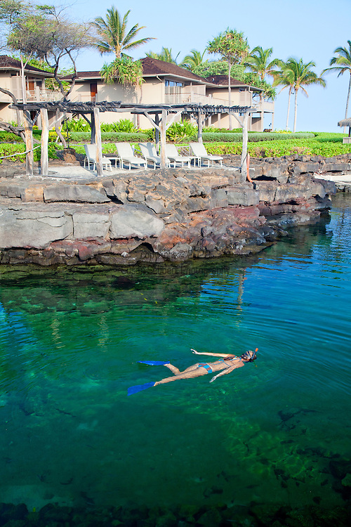The Four Seasons Resort Hualalai at Historic Kaupulehu on the Big Island of Hawaii. Beside the ocean in the northernmost crescent, King's Pond is carved out of the natural lava rock. Fresh mountain water and ocean water are combined via subterranean channels for a refreshing swim. There is also an adjacent whirlpool..Stocked with over 3,500 fish, including spotted eagle rays, King's Pond also offers snorkelling from 10:00 am to 4:00 pm, with two hours of complimentary snorkelling gear daily.