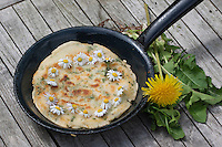 Pfannkuchen mit Gänseblümchen und Löwenzahn, Outdoor, Kräuter, Kräuter-Pfannkuchen, Kräuterpfannkuchen, Ernte