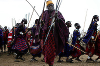 """In Meshili (subvillage of Olbalbal) in the NCA, they are having a milk ceremony.  The name of the family having the ceremony is Nakiti.  A milk ceremony is the first step of a warrior becoming an elder.  This is basically a feast and dancing in a remote corner of the NCA overlooking Olduvai gorge.  Maasai drink blood from the bull as they slaughter it...Maasai warriors drink a kind of soup from bark and other ingredients that helps them """"purge"""" the demons of killing other animals or having their friends killed.  They convulse and it takes two or three other Maasai warriors to hold them."""