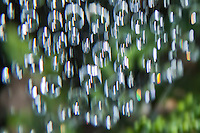 Raindrops with slow shutter speed and gentle camera motion to create an illusion of movement.