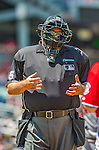 26 July 2013: MLB Umpire and Crew Chief Wally Bell works at home plate during a game between the New York Mets and the Washington Nationals at Nationals Park in Washington, DC. The Mets shut out the Nationals 11-0 in the first game of their day/night doubleheader. Mandatory Credit: Ed Wolfstein Photo *** RAW (NEF) Image File Available ***