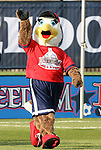 11 April 2009: Glory, the Washington Freedom mascot. The Washington Freedom played the Chicago Red Stars to a 1-1 tie at the Maryland SoccerPlex in Boyds, Maryland in a regular season Women's Professional Soccer game.
