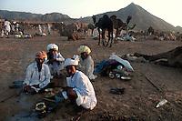 Camel owners prepairing food in front of their tent at Pushkar fair ground. Rajasthan, India. Arindam Mukherjee