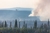 Helicopter dumps water on the May 2010 Eagle Trail fire near Tok and Tanacross, Alaska.
