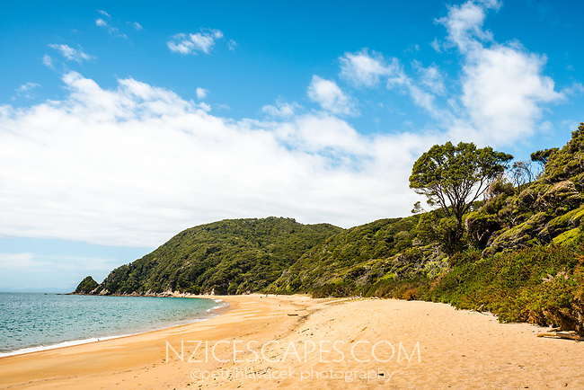 Pristine Anapai Bay on Abel Tasman Coast Track, Abel Tasman National Park, Nelson Region, South Island, New Zealand