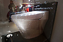 $128,000 Swarovski Crystal Toilet