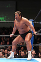 Riki Choshu, JANUARY 10, 2011 - Pro Wrestling : LEGEND THE PRO-WRESTLING founding event at Korakuen Hall in Tokyo, Japan. (Photo by Yukio Hiraku/AFLO)
