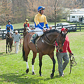 6th Maiden Claimer - Casual Creeper