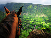Waipio Valley by Horseback, Big Island, Hawaii