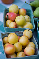 Fresh, local organic and biodynamically grown yellow plums grown by Laura Sabourin's Feast of Fields and on sale at Toronto's Dufferin Grove organic farmers market.