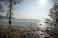 SEA_LOCATION_80132