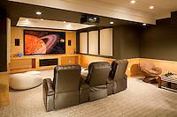Multi Purpose Basement Media Room