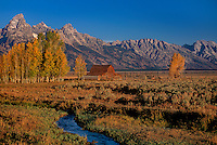 749450381 aspens in fall color complement the rustic colors of an old barn with stream in foreground and the teton range in the background on mormon row in grand tetons national park wyoming