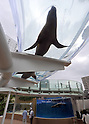 August 1, 2011, Tokyo, Japan - Sea Lions swim overhead in the Aquaring, a doughnut-shaped waterway, at Shunshine City Aquarium in Tokyos Ikebukuro district on Monday, August 1, 2011. The main attraction at the 66-story landmark opens for general public on August 4 upon the completion of the 11-month renewal work. (Photo by Natsuki Sakai/AFLO) [3615] -mis-