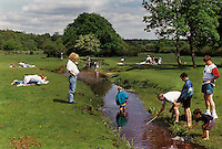 Families paddling and fishing in a stream in the New Forest.