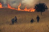 CFS. Incendi. Fire. 3